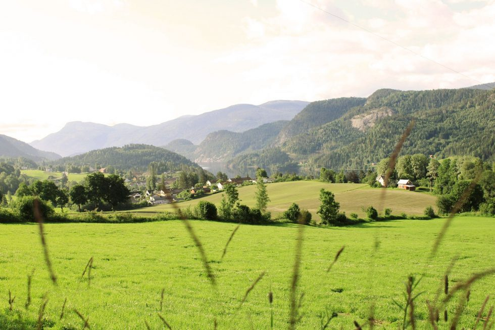 Interkommunalt  Samarbeid  I  Vest-Telemark